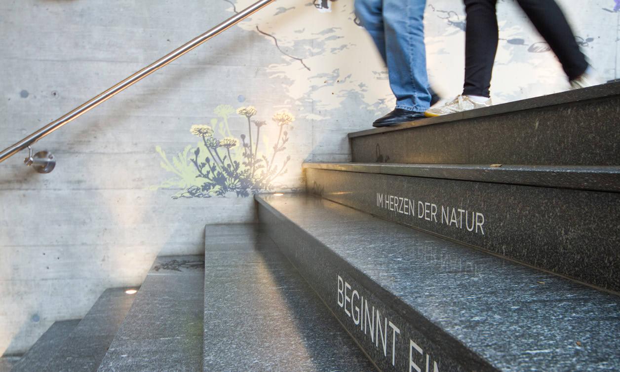 maison gruyère décor béton textes escalier